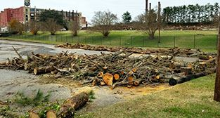 Free firewood available outside former Schoolfield plant