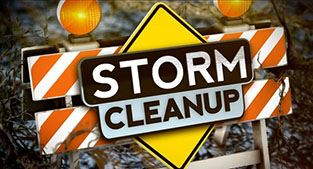 Storm cleanup image